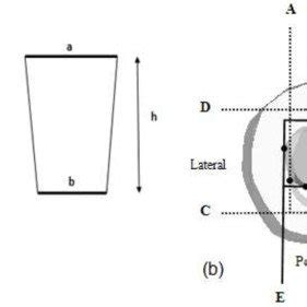 Research articles on ratio analysis
